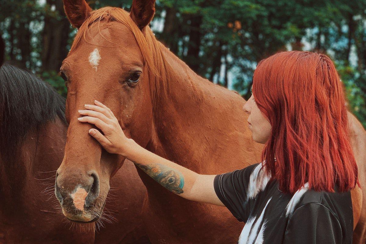 horses safe cowgirl magazine