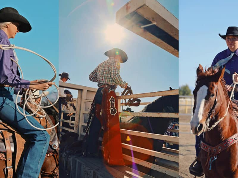 Cowgirl breakaway roper bronc rider