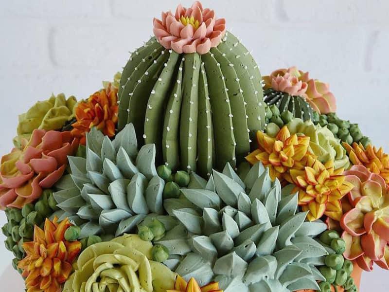 Cactus and Succulent Cake
