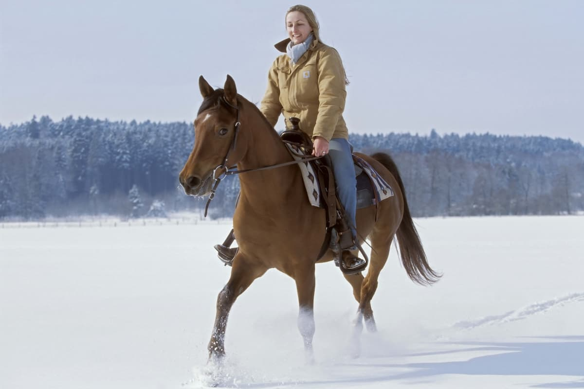 winter riding cowgirl magazine