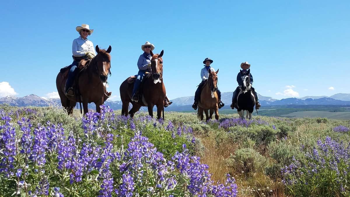blue sky sage cowgirl magazine