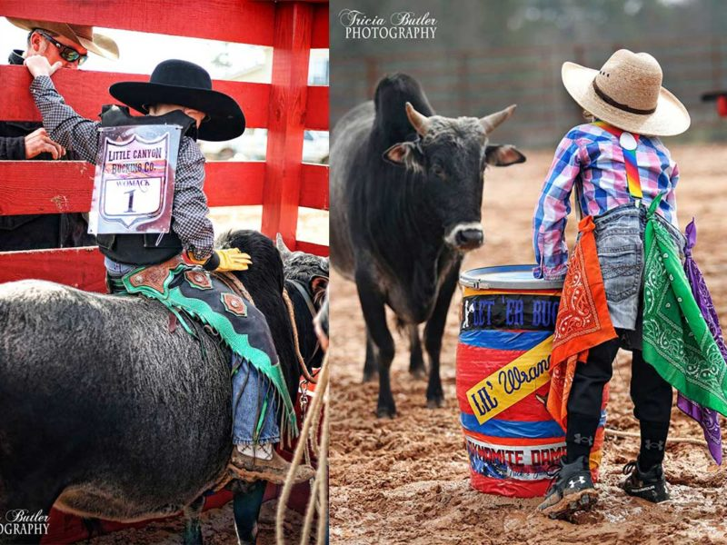 bull fighting bull riding photography cowgirl magazine