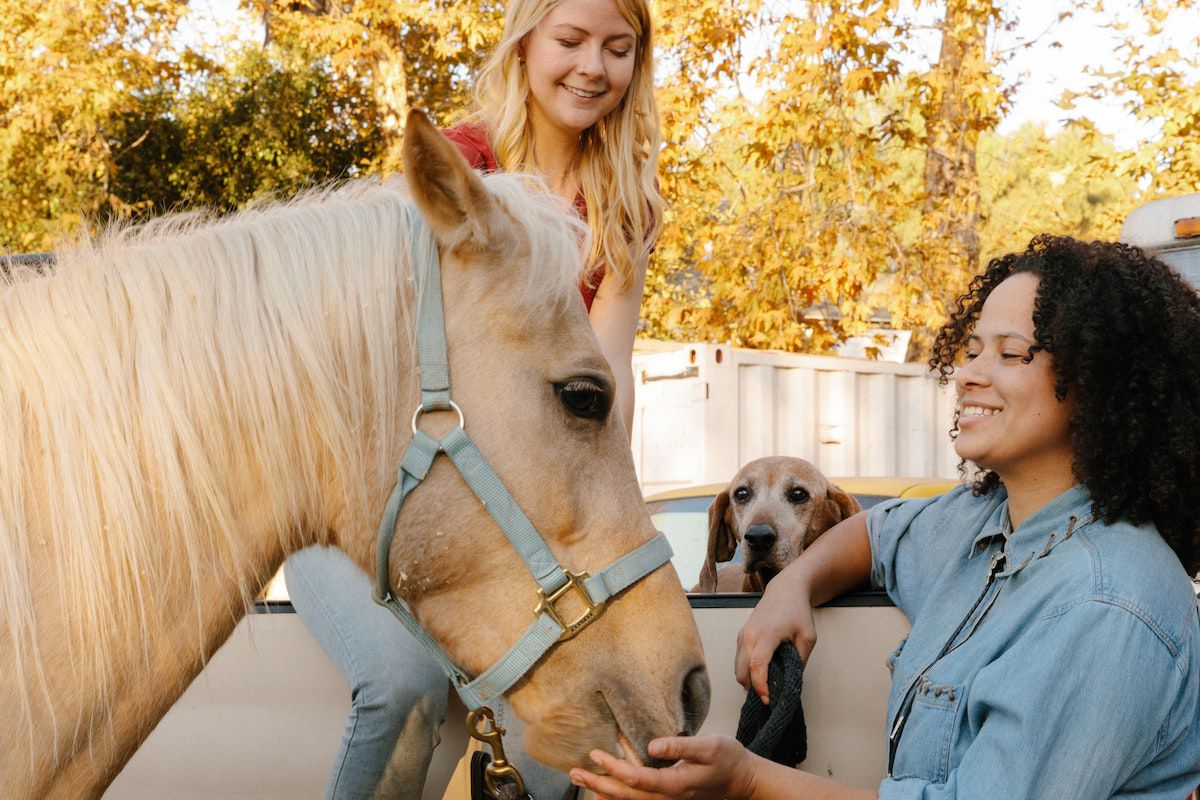 visit buying cowgirl magazine