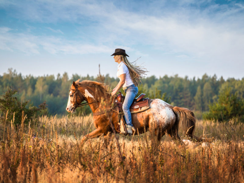 horse girl say cowgirl magazine