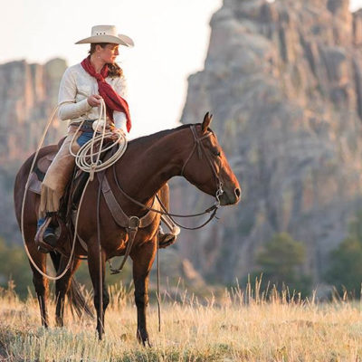 diamond mcnabb horse sale cowgirl magazine