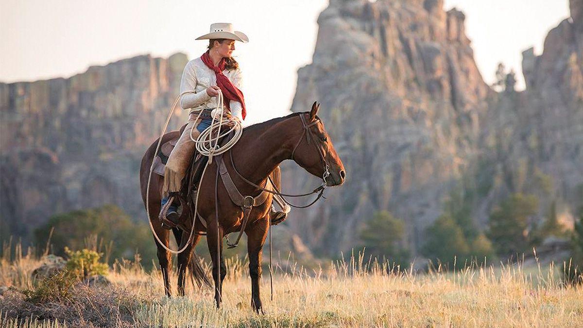 diamond mcnabb horse sale cowgirl magazine