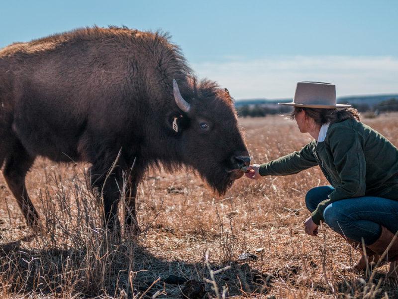 buffalo gals cowgirl magazine