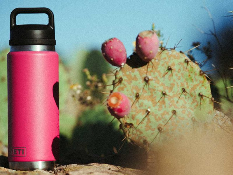 yeti prickly pear cactus cowgirl magazine