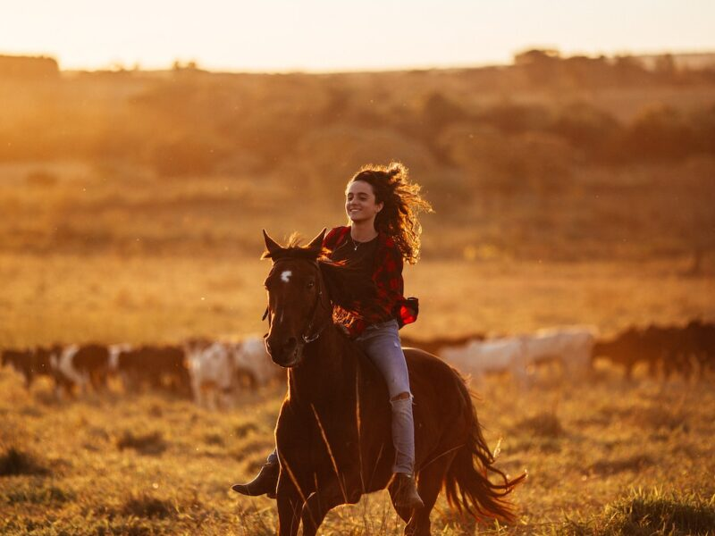 horse lover cowgirl magazine