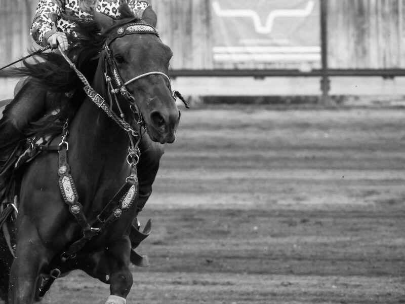 barrel horse cowgirl magazine