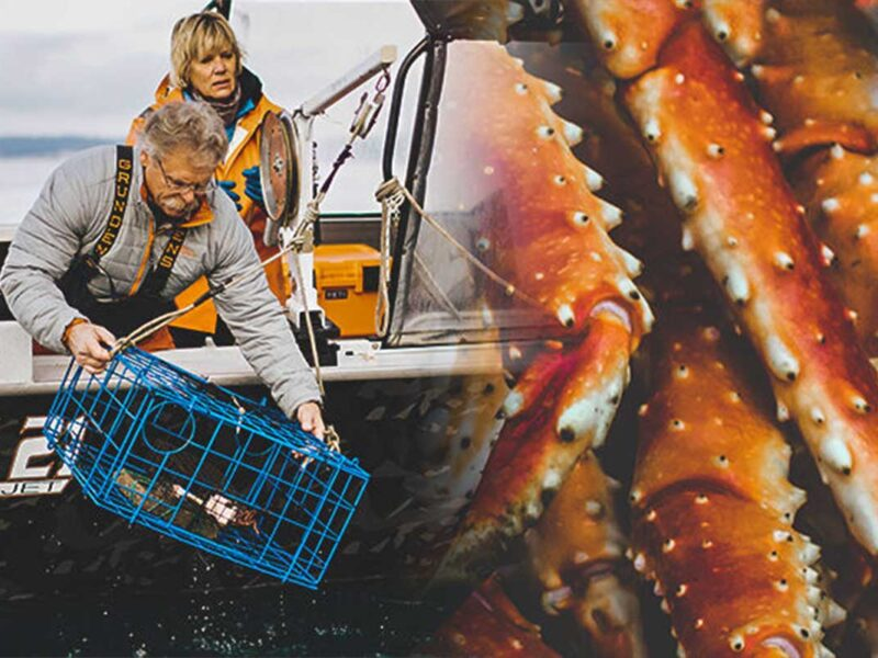 king crab orange yeti cowgirl magazine yeti coolers