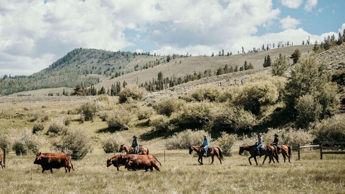 C Lazy U Ranch cowgirl magazine