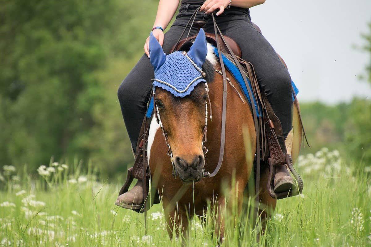 overcome fear cowgirl magazine