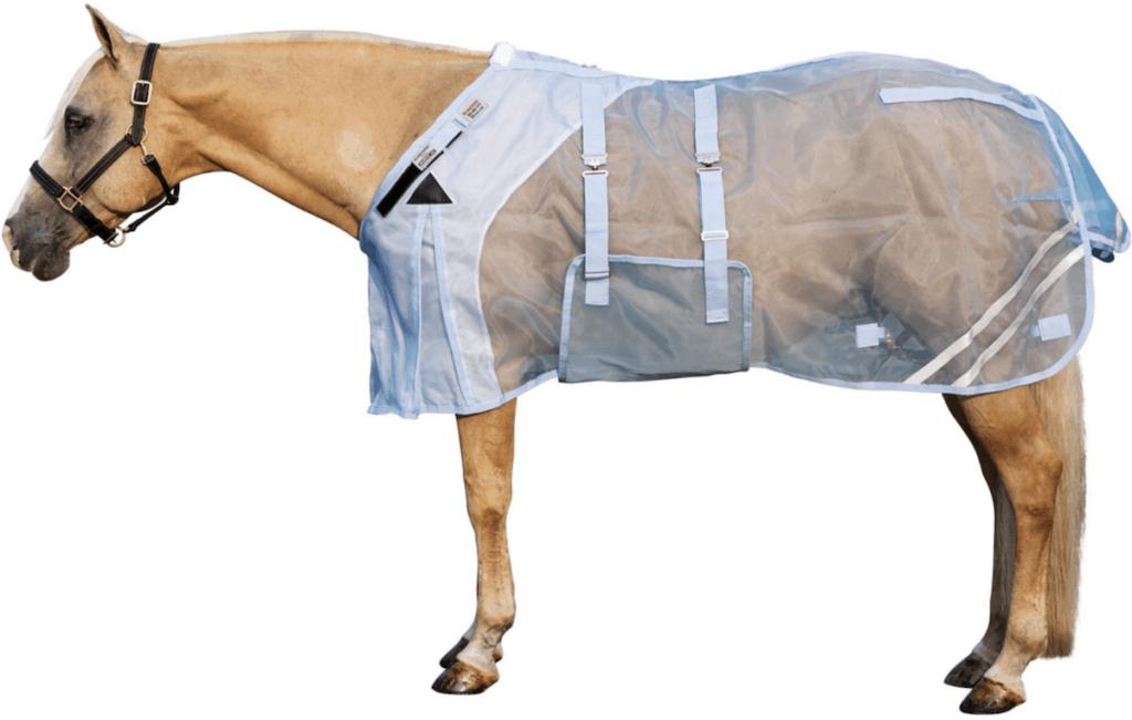 sheet cowgirl magazine