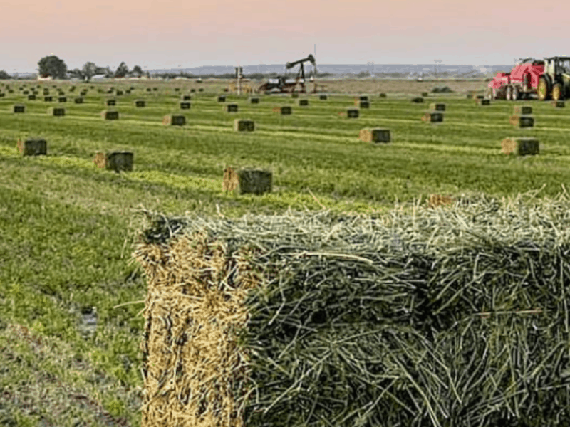 cowgirl-magazine-full-bale-hay-bag