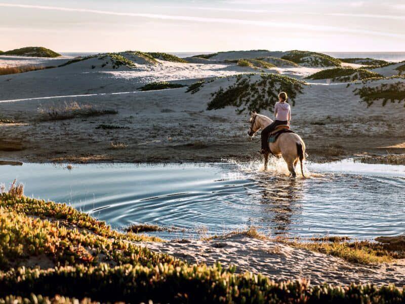 water cowgirl magazine